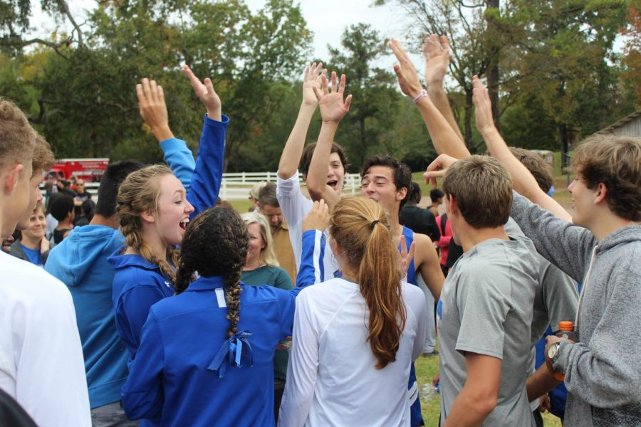 Photo Gallery: Cross Country at Sectionals