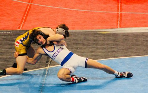 Hornets wrap up wrestling season at state