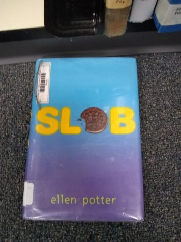 Book Blog Review- Slob
